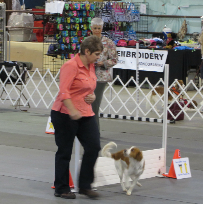 Lucy Birmingham Kennel Club Rally