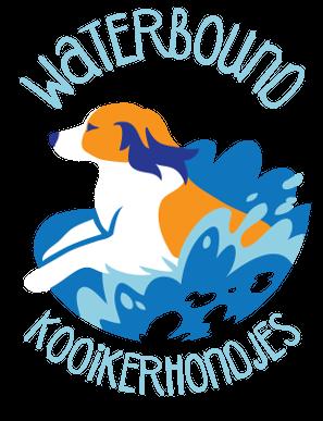 Waterbound Kooikerhondje